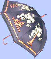 Year 2000 STICK umbrella